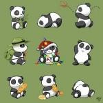 cute_pandas