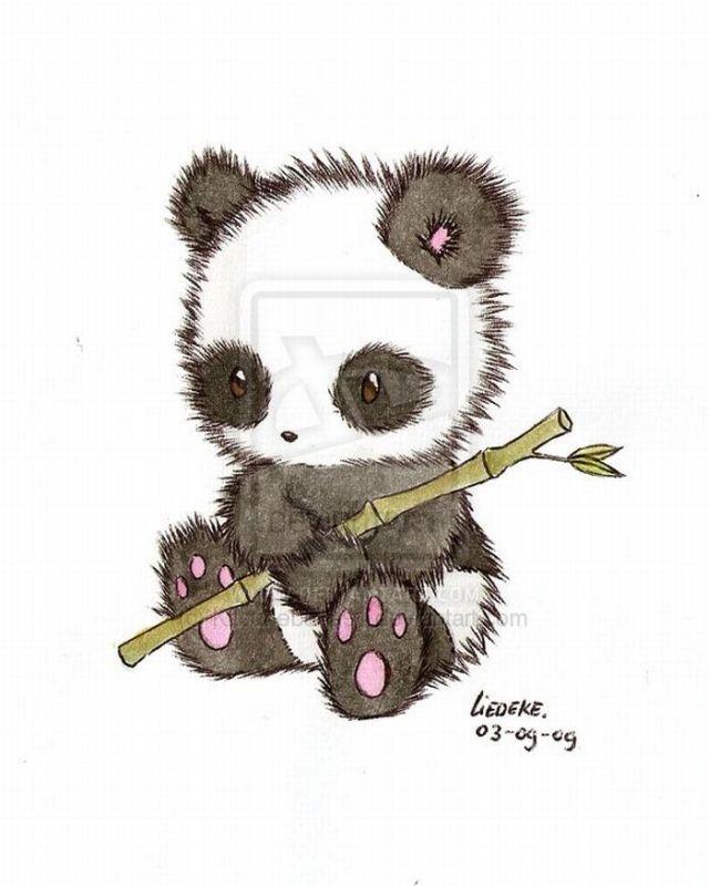 Cute Panda Drawings